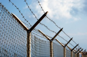 border-fence-photo5